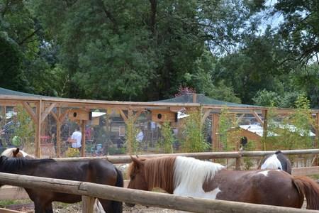 Ferme p dagogique centre questre magali - Centre equestre jardin acclimatation ...